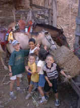 horses and costa rica kids
