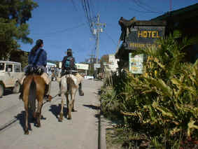 horseback riding adventure vacation start in Sta. Elena Monteverde Costa Rica