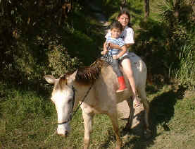children horseback riding  4 and 2 year old - no saddle Monteverde Costa Rica
