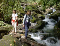 hike in the forest on waterfall-horseback-riding-tour