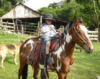Princessa is the star at Smiling Horses Monteverde