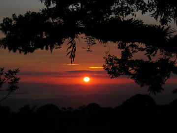 monteverde costa rica sunset horseback ride