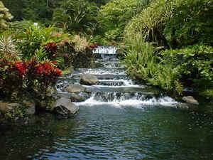 tabacon hot springs at arenal volcano fortuna